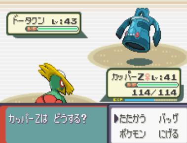 7101011ソテツ (2)