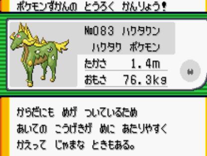 17101104新ポケ (1)