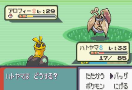 16101104色違い