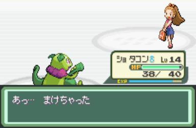 620110115一番手 (3)