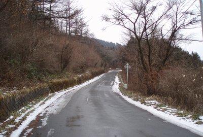 高篠峠から大野峠方面2(2009.1.29)