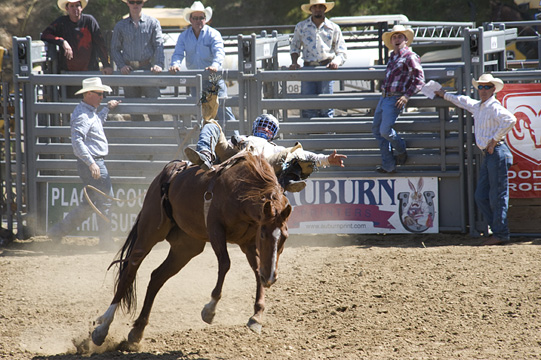 Bareback Bronc, Travis Kevie (78)
