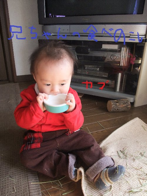 2011_01190046.jpg