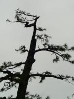 画像 076