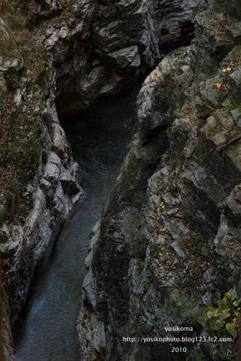 蝉の渓谷2