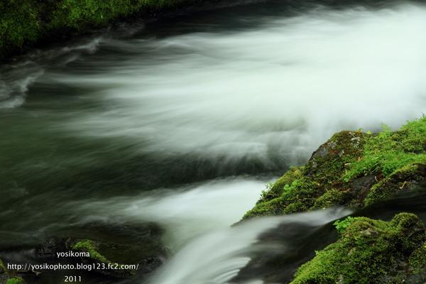 自然園の滝4