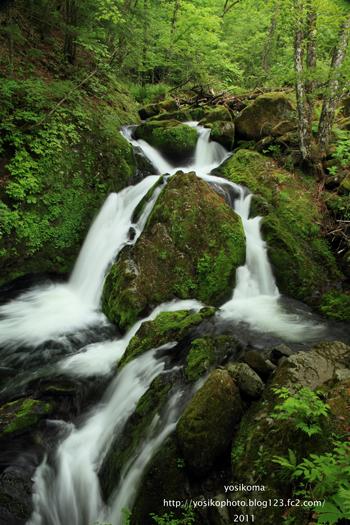自然園の滝1