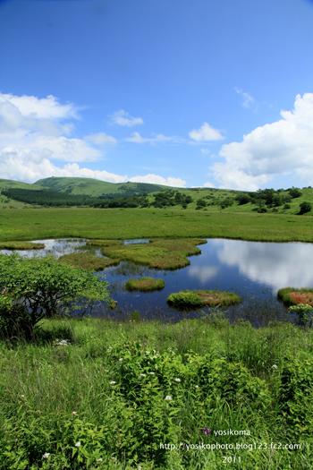 八島湿原4