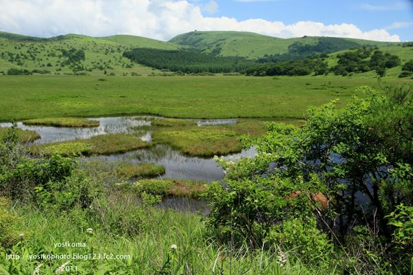八島湿原1
