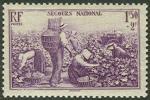 フランス・ブドウの収穫