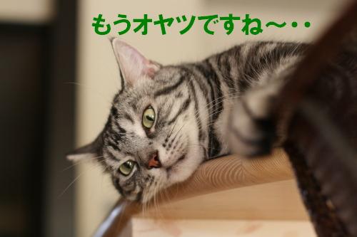 020_20110907101306.jpg