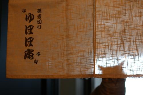 102_20110124150206.jpg