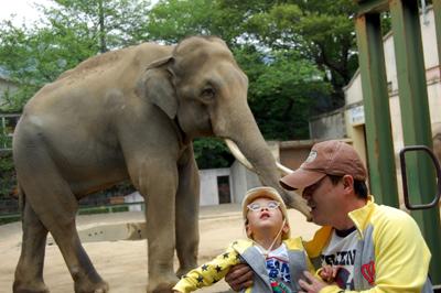 王子動物園5