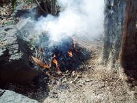 焚き火H201123