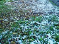 初雪H201125