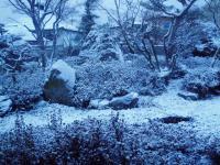雪の庭H201226