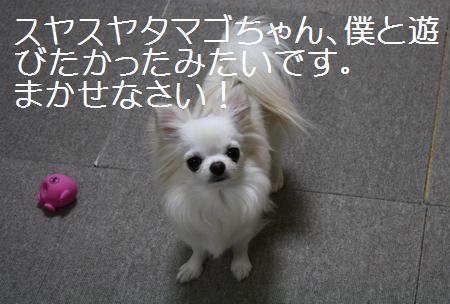 IMG_0627.jpg