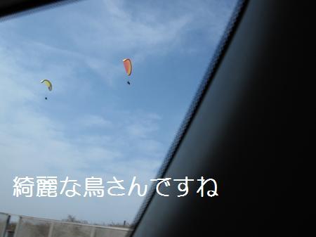 IMG_1664.jpg