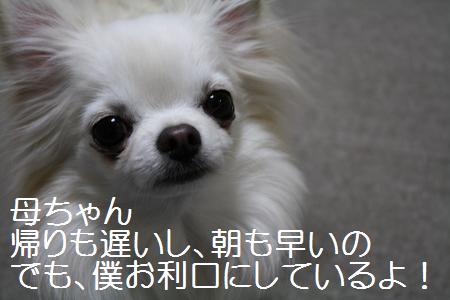 IMG_1695-2.jpg
