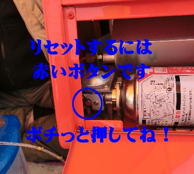 CIMG0188.jpg