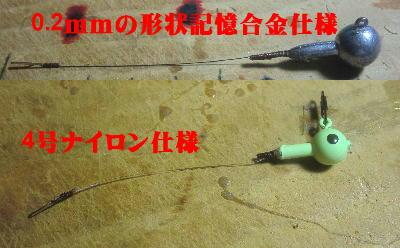 CIMG1395.jpg