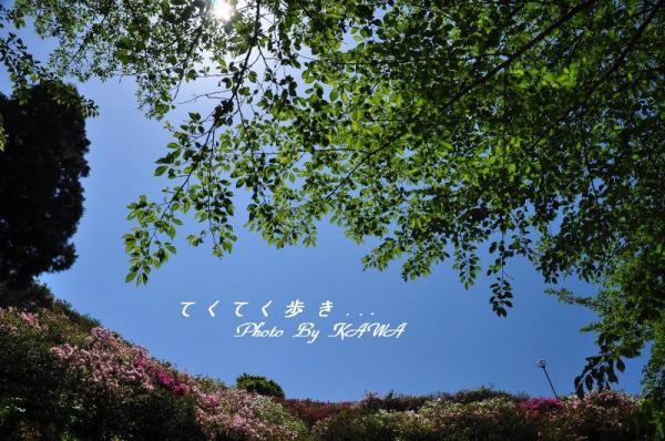 1冨士山_5481