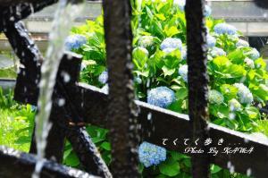 9安並_7686
