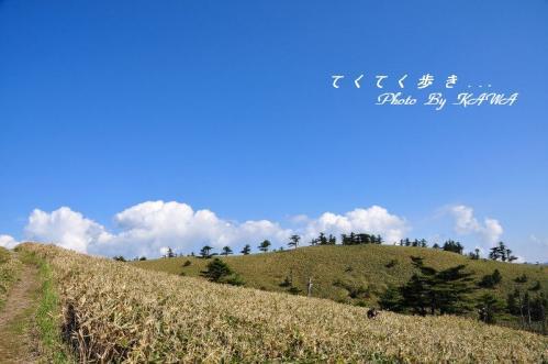 5瓶ヶ森_8547