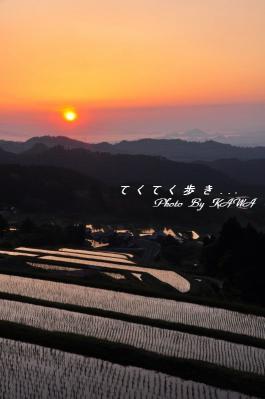 5湧水_8663