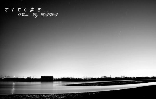 2重信川河口10.06.08