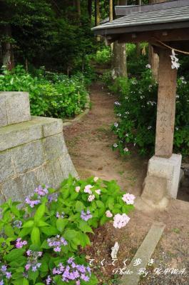 2惣河内_8961