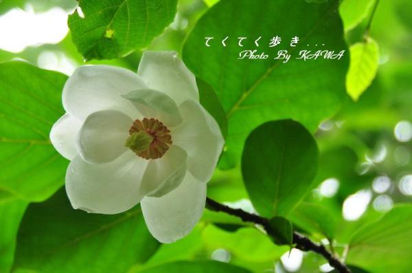 5学習館_9888