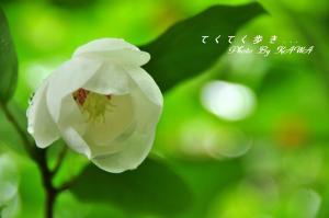 7学習館_9883
