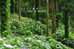 6風穴_1144