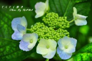 12風穴_1169