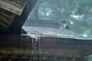 7雨10.08.29