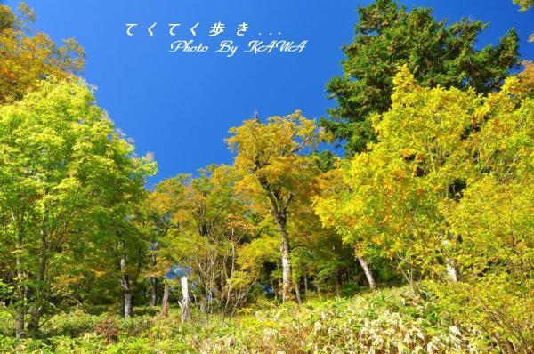 4大川嶺10.10.16