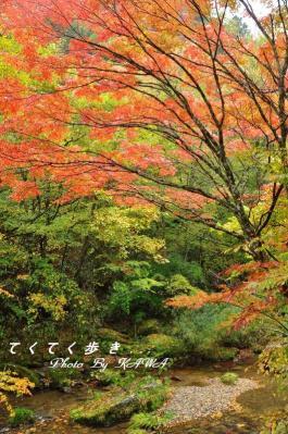 7小田深山10.10.24