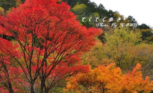 5小田深山10.10.30