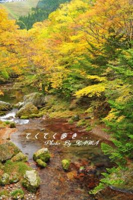 9小田深山10.10.30