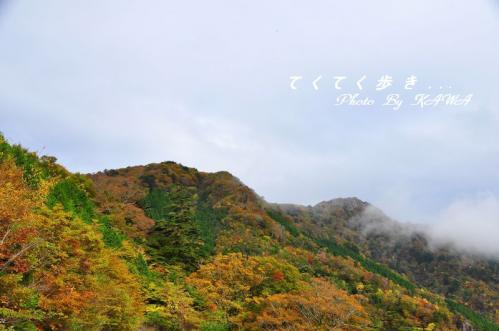 2大川嶺10.10.30