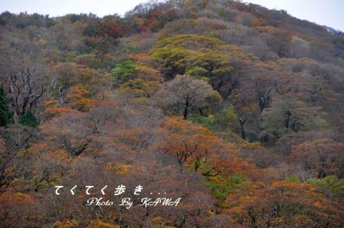 4大川嶺10.10.30