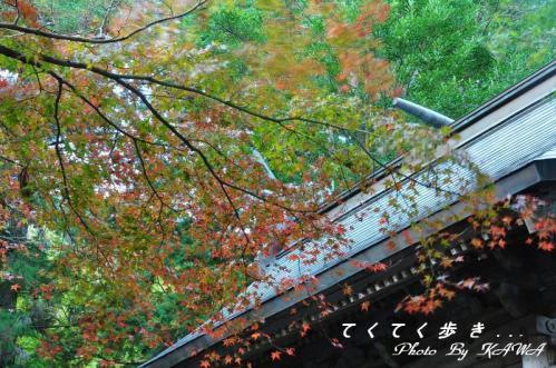 2稲荷山10.11.03