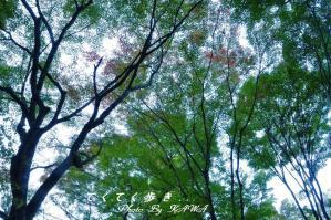 5稲荷山10.11.03