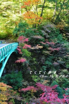 5通天橋10.11.06