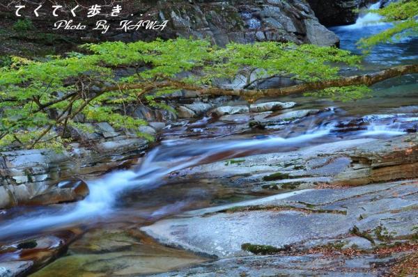 10鶴ヶ背橋10.11.06