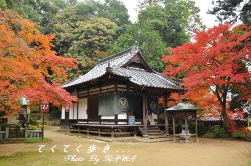 4興隆寺2010.11.14