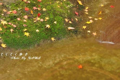 8滑川10.11.14