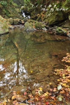 8白滝10.11.21