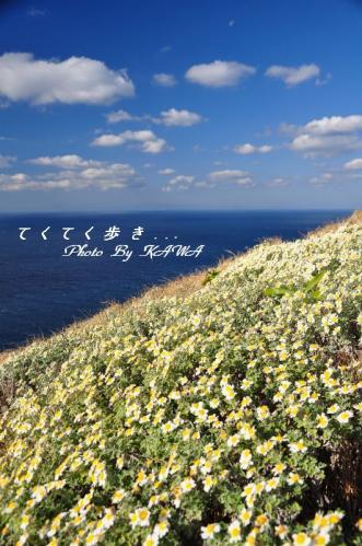 1高茂岬10.11.27